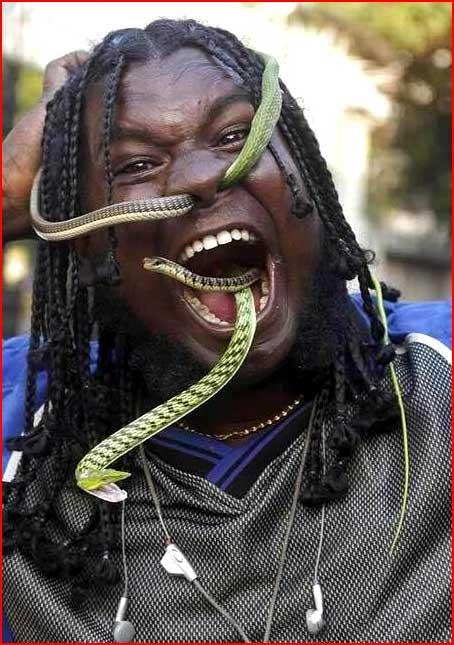 לוחש לנחשים