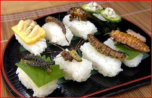 מעדני גורמה מהמטבח היפני