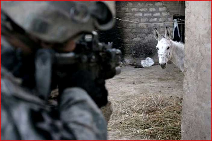 פדיחות צבאיות