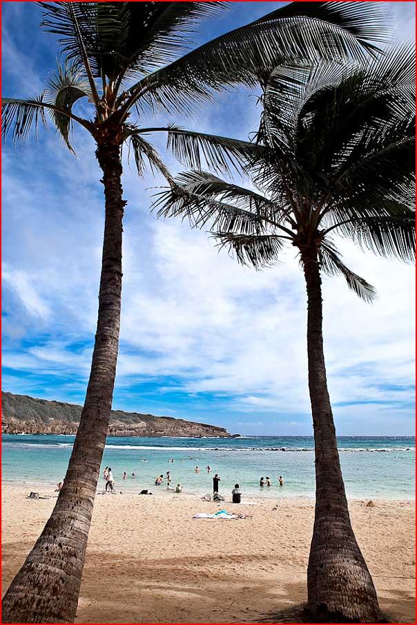 הוואי