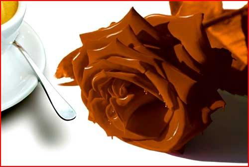 יצירות משוקולד