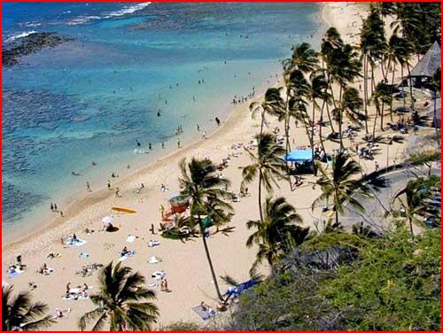 טיול להוואי