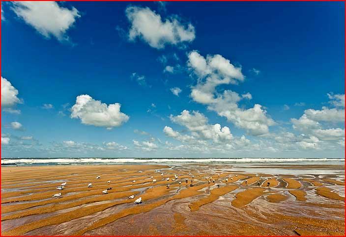 בלגיה. על חוף הים