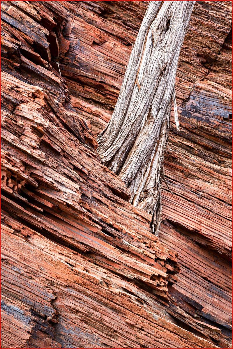 צלם נוף סיימון בתרוורת' מצלם אוסטרליה
