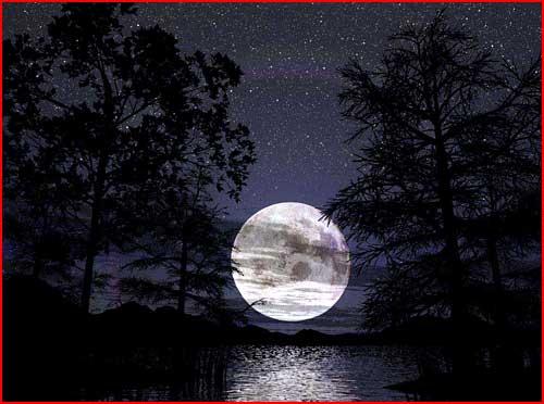 לילות רומנטיים