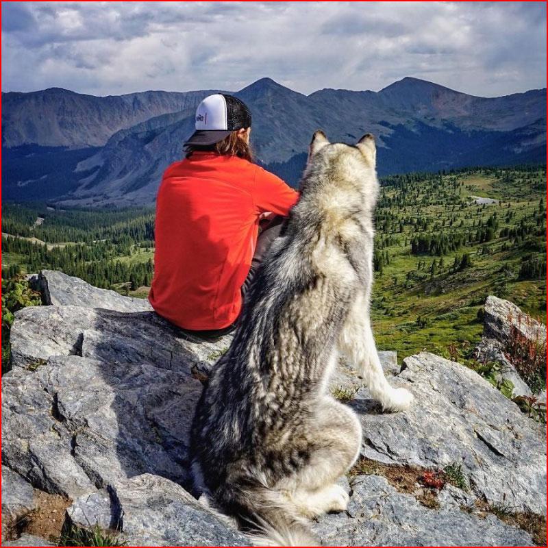 קלי לאנד (Kelly Lund) מטייל עם הכלב שלו