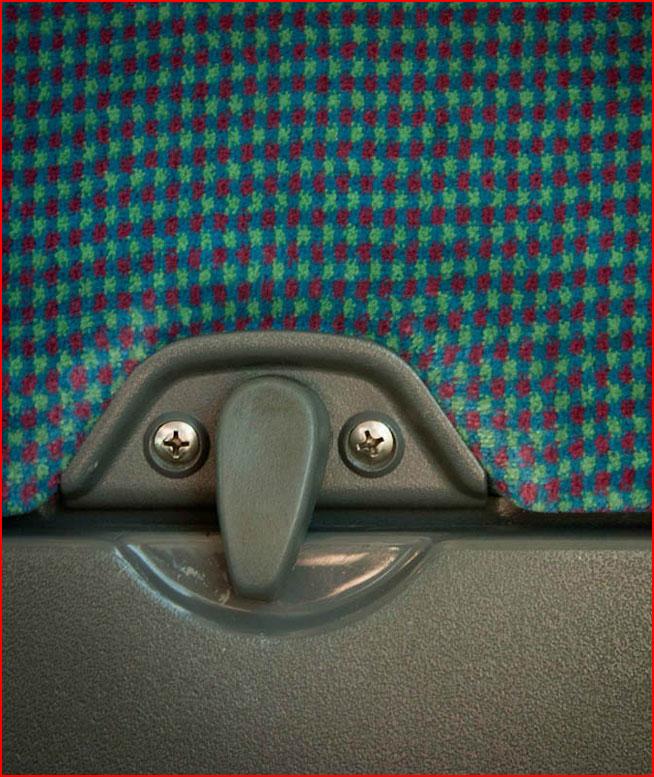 פרצופים בכל מקום