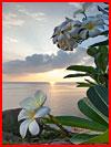 גן עדן בתאילנד (30 תמונות)