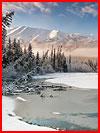 היופי הקר של אלסקה