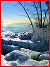 שירת החורף (25 תמונות)