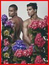 בין הפרחים