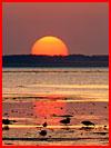 שקיעות השמש (40 תמונות)