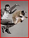 סלבס וחתולים