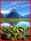 נופי של ניו זלנד (15 תמונות)