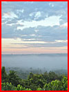 טיול באמזוניה