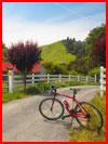 טיול אופניים בקליפורניה