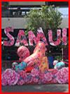 סאמוי, תאילנד (35 תמונות)